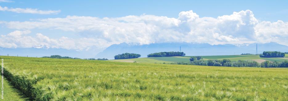 Was bedeutet Regenerative Landwirtschaft mit EM